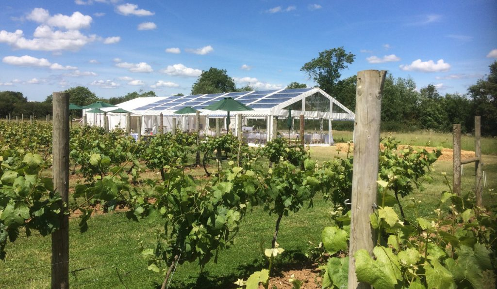 clear span marquee in vineyard