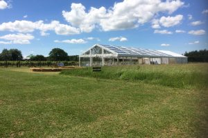 Clear roof marquee hired for event in vineyard venue