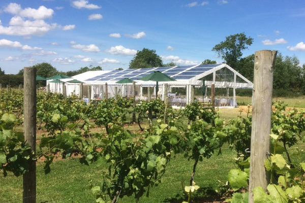 clear roof marquee in vineyard
